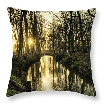 Sunset Over Stream Throw Pillow