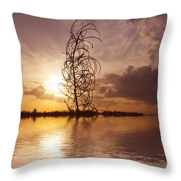 Sunset Over The Lake  Throw Pillow by David French