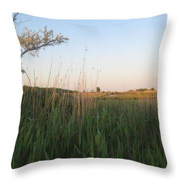 Sunset Over The Marshlands Throw Pillow