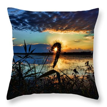 Sunset Over The Refuge Throw Pillow