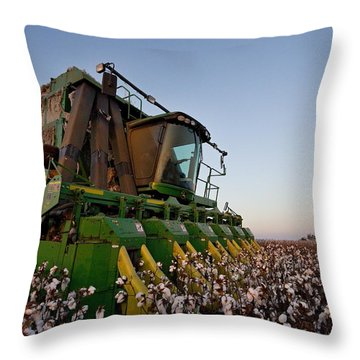 Sunset Pickin' Throw Pillow