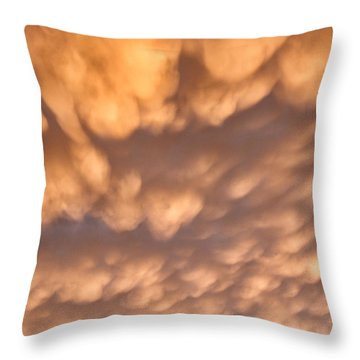 Throw Pillow featuring the photograph Sunset Pillows by William Selander