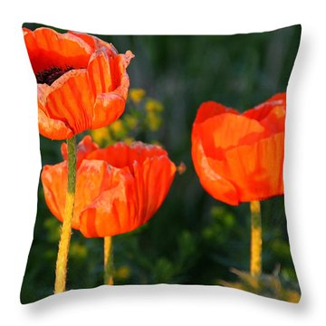 Sunset Poppies Throw Pillow by Debbie Oppermann