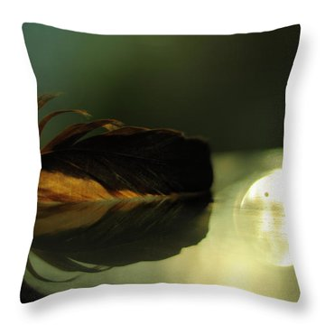 Sunset Throw Pillow by Rebecca Sherman