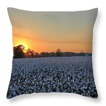 Sunset Row Throw Pillow