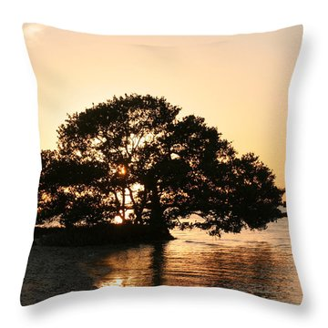 Sunset Silhouette Throw Pillow