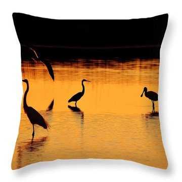 Sunset Silhouette Throw Pillow by Al Powell Photography USA