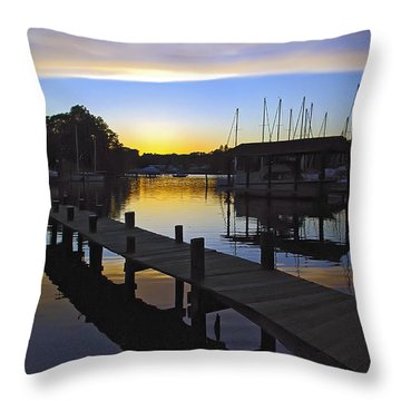 Throw Pillow featuring the photograph Sunset Silhouette by Brian Wallace