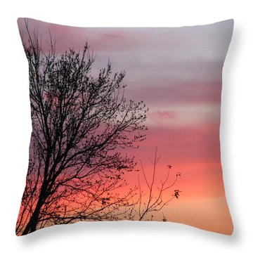 Sunset Silhouette Throw Pillow by Ellen Meakin