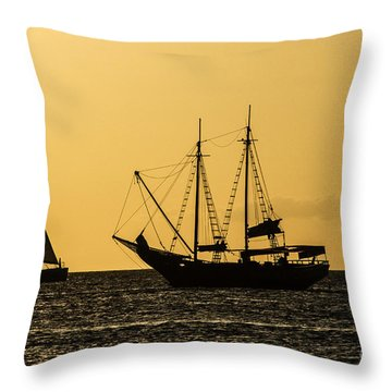 Sunset Silhouette Throw Pillow by Judy Wolinsky