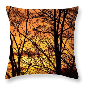 Sunset Silhouettes Behind The George Washington Masonic Memorial Throw Pillow by Jeff at JSJ Photography