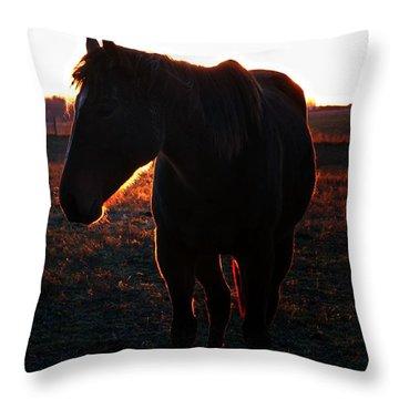 Throw Pillow featuring the photograph Sunset Splendor by Robert McCubbin