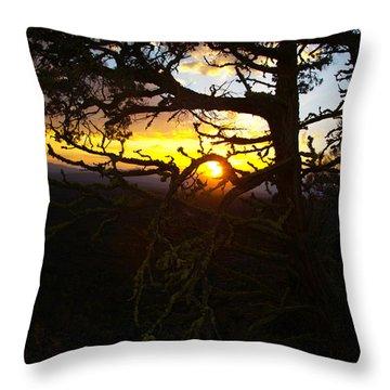 Sunset Through Branch Throw Pillow