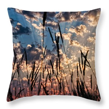 Throw Pillow featuring the photograph Sunset Through The Grasses by Don Schwartz