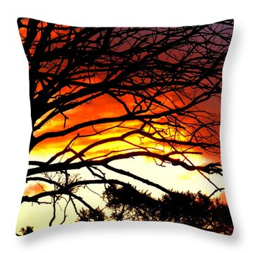 Sunset Tree Silhouette Throw Pillow by The Creative Minds Art and Photography