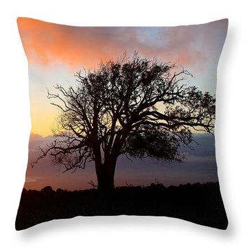 Sunset Tree In Maui Throw Pillow