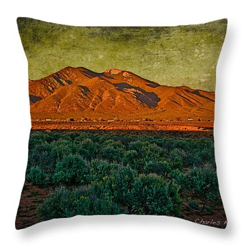 Sunset V Throw Pillow