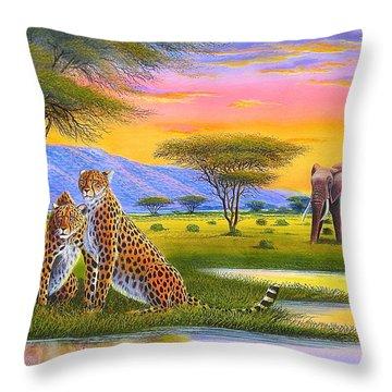 Sunset Watch Throw Pillow