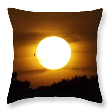Sunset With Soaring Birds Throw Pillow by Keegan Hall