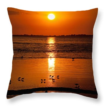 Throw Pillow featuring the photograph Sunset With The Birds Photo by Meg Rousher