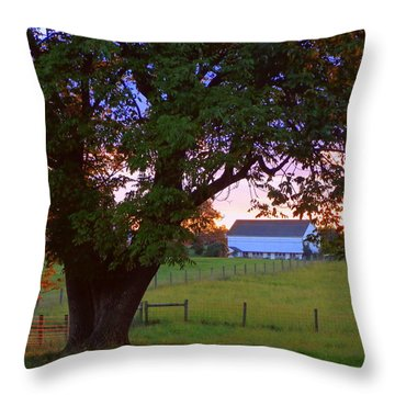 Sunset With Tree Throw Pillow