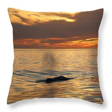 Sunset Wonder Throw Pillow