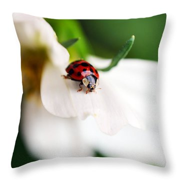 Sunshine And Petal Rest Throw Pillow