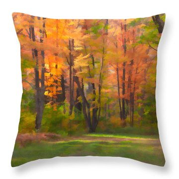 Sunshine At The Curve Throw Pillow by Susan Crossman Buscho