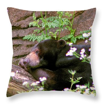 Sunshine Bear Throw Pillow