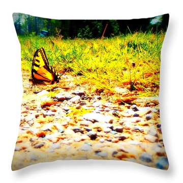 Sunshine Butterfly Throw Pillow