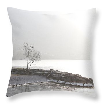 Throw Pillow featuring the photograph Sunshine by Colleen Williams