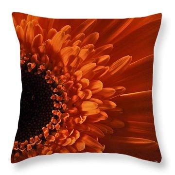 Sunshine Throw Pillow by Deborah Klubertanz