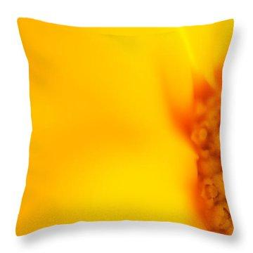 Sunshine Haiku  Throw Pillow by Lisa Knechtel