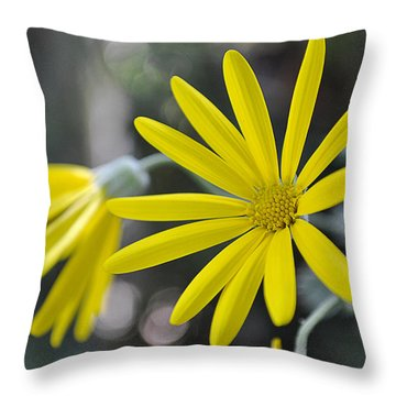 Sunshine In A Flower Throw Pillow
