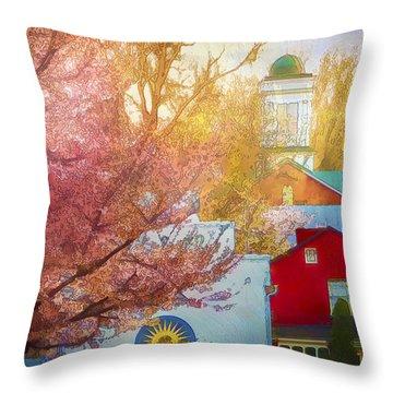 Sunshine In Springtime Throw Pillow