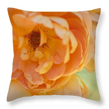 Throw Pillow featuring the photograph Sunshine by Julie Andel