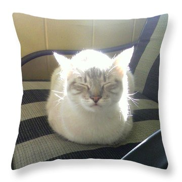 Sunshine Kitty Throw Pillow