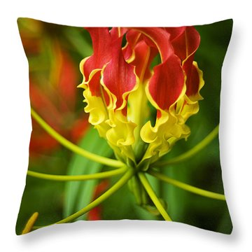 Sunshine On A Cloudy Day Throw Pillow by Beverly Stapleton