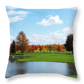 Sunshine On A Country Estate Throw Pillow