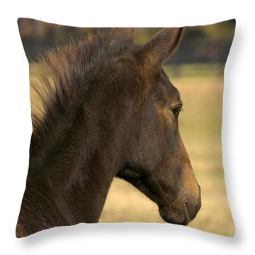 Sunshine On My Shoulder Throw Pillow