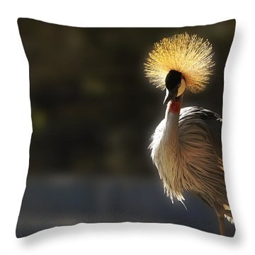 Sunshine On My Shoulders Throw Pillow by Music of the Heart