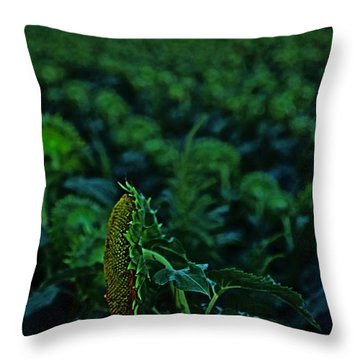 Supermoon-lit Sunflower Throw Pillow
