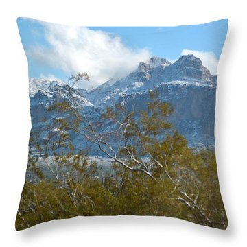 Superstition New Years Day Throw Pillow by Pamela Walrath