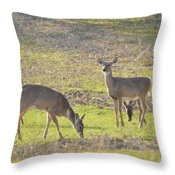Supper Gathering Throw Pillow