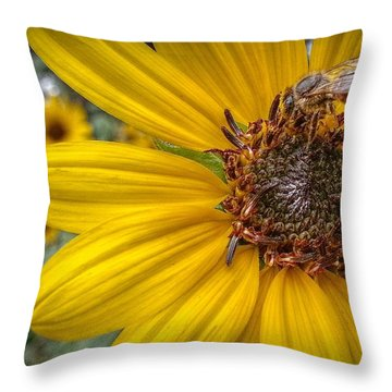 Supper Time Throw Pillow by Linda Unger