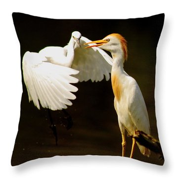 Suprised Cattle Egret Throw Pillow by Robert Frederick