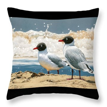 Surf 'n' Turf - Franklin's Gulls Throw Pillow by Frances McMahon