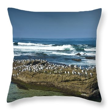 Surf Waves At La Jolla California With Gulls Perched On A Large Rock No. 0194 Throw Pillow