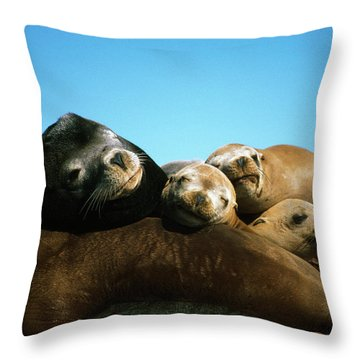 Surface Level View Of California Sea Throw Pillow