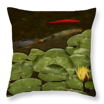 Throw Pillow featuring the photograph Surface Tension by Michael Gordon